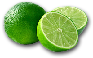 Lime PNG Pic PNG Clip art