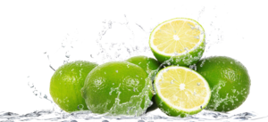 Lime Splash PNG File PNG Clip art