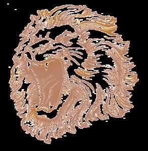 Lion Head PNG Image PNG Clip art