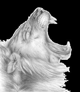 Lioness Roar PNG Clipart PNG Clip art