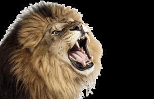 Lioness Roar PNG Photo PNG Clip art