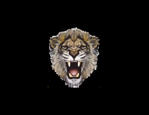 Lioness Roar PNG Photos PNG Clip art
