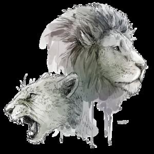 Lioness Roar Transparent Background PNG Clip art