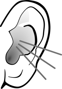 Listening Ear PNG Image PNG Clip art