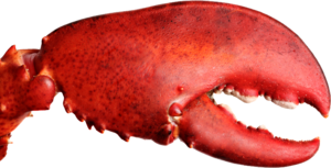 Lobster PNG File PNG Clip art