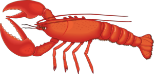 Lobster PNG HD PNG Clip art