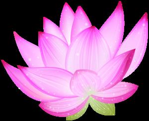 Lotus PNG Clipart PNG Clip art