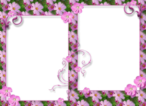 Love Frame Transparent PNG PNG Clip art