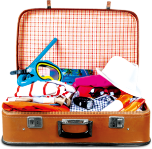 Luggage PNG Transparent HD Photo PNG Clip art