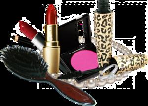 Makeup PNG Free Download PNG Clip art