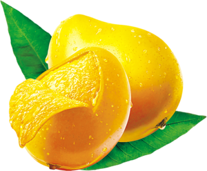 Mango PNG Image Free Download PNG Clip art