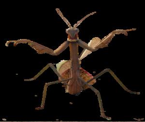 Mantis PNG HD PNG Clip art