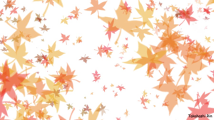 Maple Leaf PNG Free Download PNG Clip art