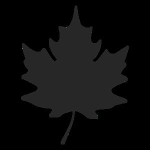 Maple Leaf PNG Image PNG Clip art
