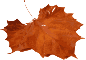Maple Leaf PNG Photo PNG Clip art