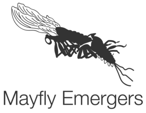 Mayfly PNG Picture PNG Clip art