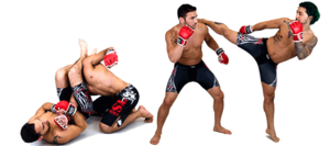 MMA PNG Free Download PNG Clip art