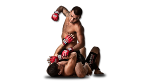 MMA PNG Pic PNG Clip art
