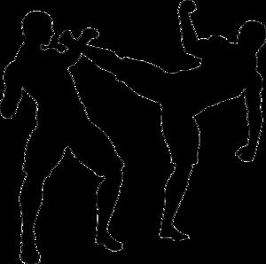 MMA PNG Transparent Image PNG Clip art