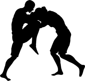 MMA Transparent PNG PNG Clip art