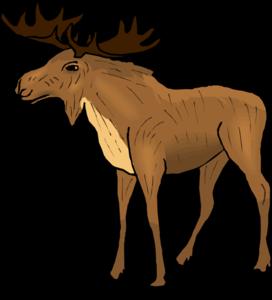 Moose PNG Transparent Image PNG Clip art