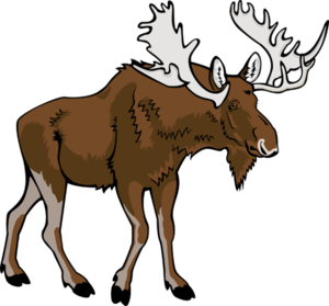 Moose Transparent PNG PNG Clip art