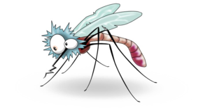 Mosquito Transparent Background PNG Clip art