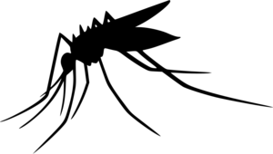 Mosquito Transparent PNG PNG Clip art