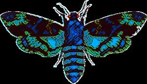 Moth Man PNG Clipart PNG Clip art