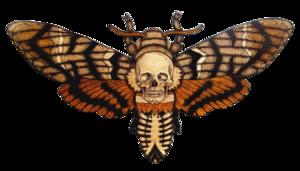 Moth PNG Transparent HD Photo PNG Clip art
