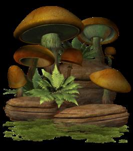 Mushroom PNG Clip art