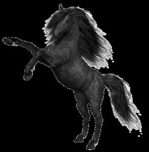Mustang Horse PNG Photos PNG Clip art