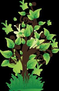 Nature PNG Transparent PNG Clip art