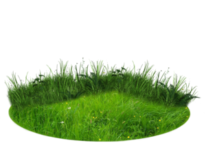 Nature Transparent Background PNG Clip art