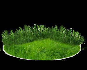 Nature Transparent Background PNG Clip art