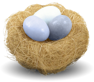 Nest PNG Clipart Background PNG Clip art