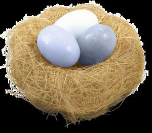 Nest PNG Clipart Background PNG Clip art