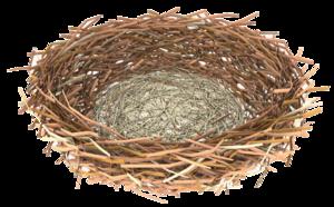 Nest PNG Transparent PNG Clip art