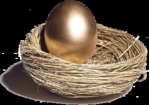 Nest Transparent PNG PNG Clip art