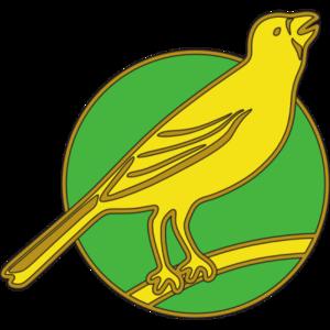 Norwich City F C PNG Image PNG Clip art