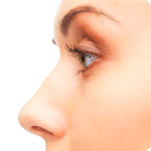 Nose PNG Transparent PNG icons
