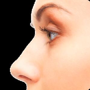 Nose PNG Transparent PNG clipart