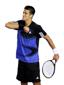 Novak Djokovic PNG HD PNG clipart