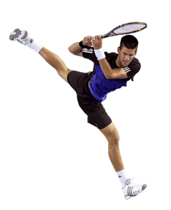 Novak Djokovic PNG Pic PNG Clip art