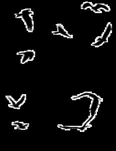 Ocean Birds PNG File PNG Clip art