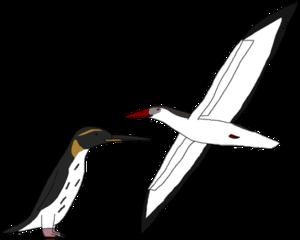 Ocean Birds PNG Picture PNG Clip art