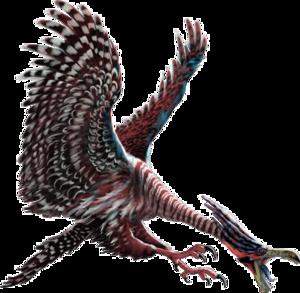 Ocean Birds PNG Transparent PNG Clip art