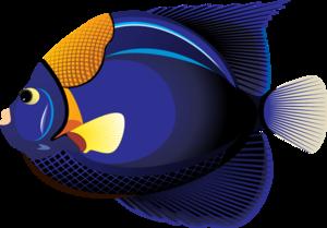 Ocean Fish PNG Clipart PNG Clip art