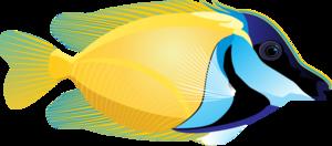 Ocean Fish PNG Picture PNG Clip art