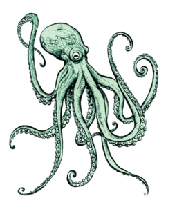 Octopus PNG File PNG icon